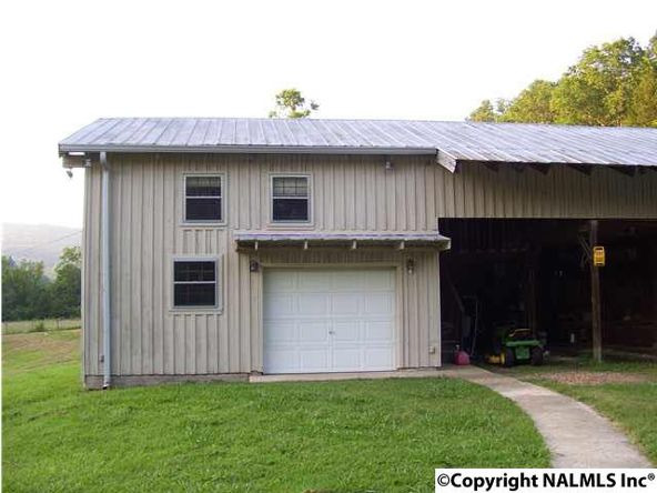 621 County Rd. 604, Hollytree, AL 35751 Photo 18