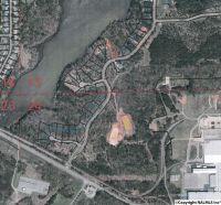 Home for sale: 19 Island Dr., Scottsboro, AL 35768