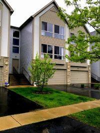 Home for sale: 667 Diamond Pointe Dr., Mundelein, IL 60060