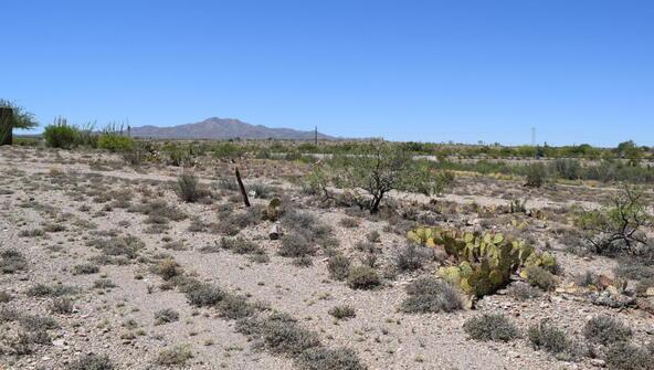 14449 E. Sands Ranch, Vail, AZ 85641 Photo 3