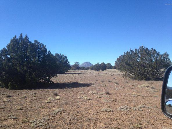 246 Antelope Run, Ash Fork, AZ 86320 Photo 10
