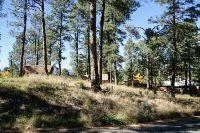 Home for sale: 303 la Luz Ln., Ruidoso, NM 88345