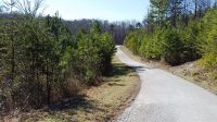 Home for sale: 0-Lot 17 Evergreen Dr., Stanton, KY 40380