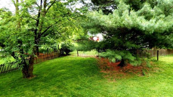 804 Springwater Cir., Lexington, KY 40515 Photo 29