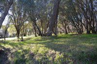 Home for sale: Oriole Ln., Palo Cedro, CA 96073