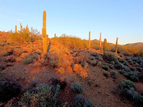 41000 N. 7th St., Phoenix, AZ 85086 Photo 25