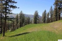 Home for sale: Tbd Winchester Ln., Kamiah, ID 83536