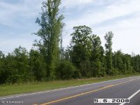 Home for sale: Lt 17 69 Hwy., Oakman, AL 35579
