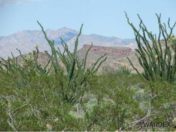 3181 Butch Cassidy Rd., Yucca, AZ 86438 Photo 26