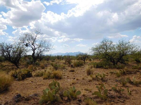 16705 S. Sierrita Mountain, Tucson, AZ 85736 Photo 36