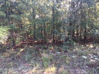 Home for sale: 571(Lot) Martin Dr., Donalsonville, GA 39845