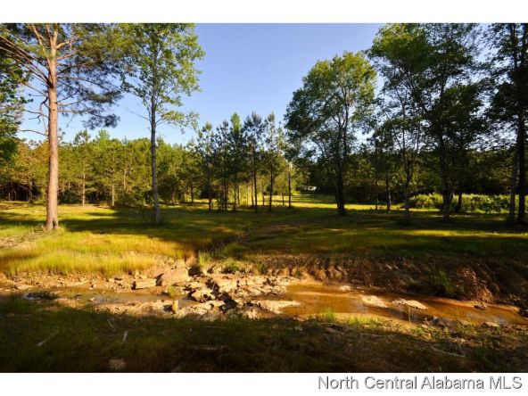 911 Co Rd. 1169, Cullman, AL 35057 Photo 13