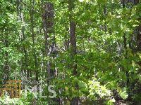 Home for sale: 762 Plum Ln., Clarkesville, GA 30523