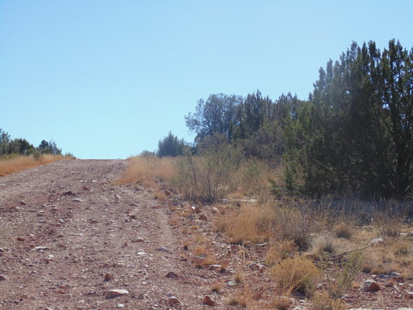 57154 N. Bridge Canyon Parkway, Seligman, AZ 86337 Photo 7