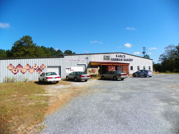 1391 Us Hwy. 84, Daleville, AL 36322 Photo 1