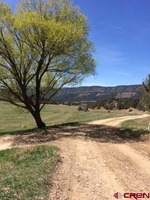 Home for sale: Tbd Rd. 41, Mancos, CO 81328