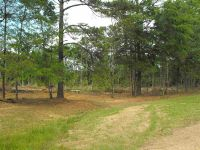 Home for sale: 18194 Hwy. 27, Crystal Springs, MS 39059