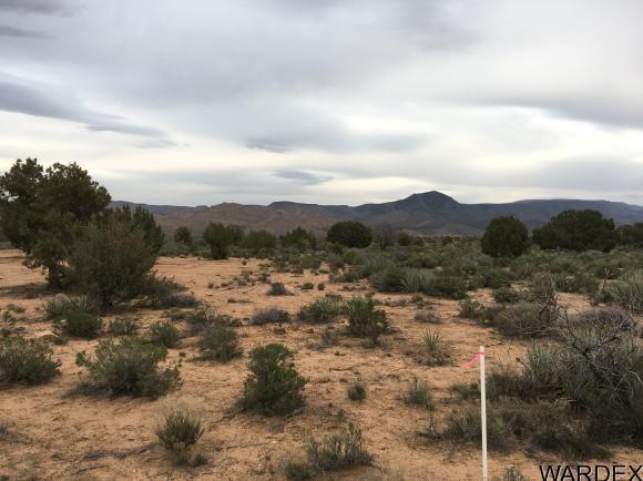 7340 N. Frerichs Ranch Rd., Hackberry, AZ 86411 Photo 14