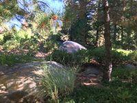 Home for sale: 307 Calabrian Ln., Lake Almanor, CA 96137