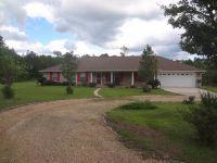 Home for sale: 64 Jacob Michael Dr., Perkinston, MS 39573