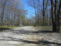 Home for sale: 9565 Pere Marquette, Canadian Lakes, MI 49346