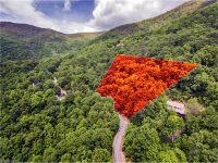 Home for sale: 29 Winding Poplar Rd., Black Mountain, NC 28711