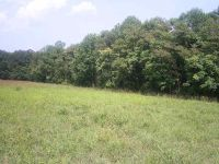 Home for sale: 00 Hwy. 340, Stanley, VA 22851