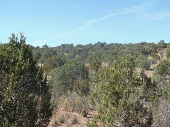57154 N. Bridge Canyon Parkway, Seligman, AZ 86337 Photo 2