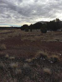 Home for sale: Concho Valley Unit 9a Lot 84, Concho, AZ 85924