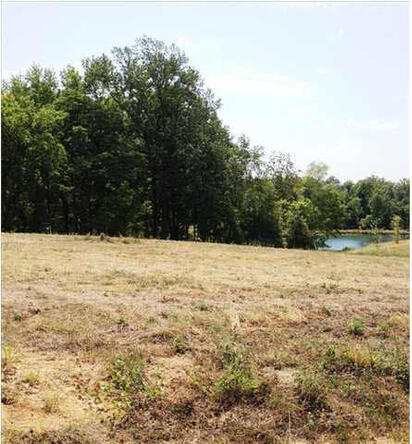 5791 Serenity Dr. Lot 14, Mount Vernon, IN 47620 Photo 19
