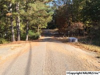 Home for sale: 0000 Windy Hill Rd., Rainbow City, AL 35906