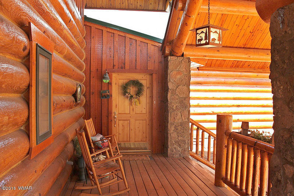 38721 State Route 373, Greer, AZ 85927 Photo 4