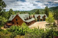 Home for sale: 389 W. Caywood Ranch Rd., Pagosa Springs, CO 81147