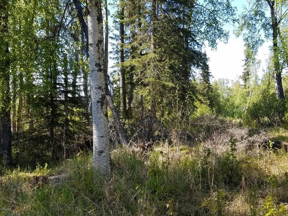 37825 Country Woods Cir., Soldotna, AK 99669 Photo 13