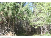 Home for sale: M21l30b Bog Brook Rd., Island Falls, ME 04747