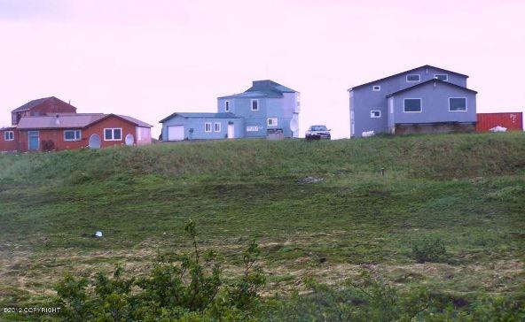 112 Baranoff St., Cold Bay, AK 99571 Photo 3