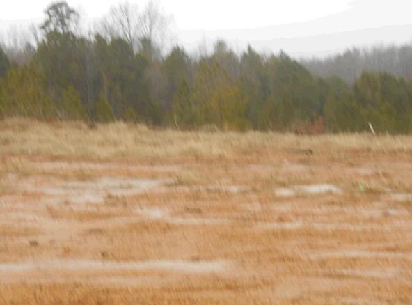 1497 Sullivan Cir., Jonesboro, AR 72401 Photo 17