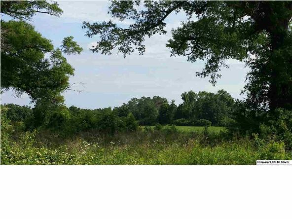 8 County Rd. 395, Section, AL 35771 Photo 3