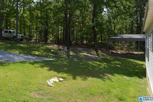 45 Lucy Ln., Sylacauga, AL 35150 Photo 62