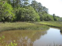 Home for sale: 12 Chisolm Plantation Rd., Edisto Island, SC 29438
