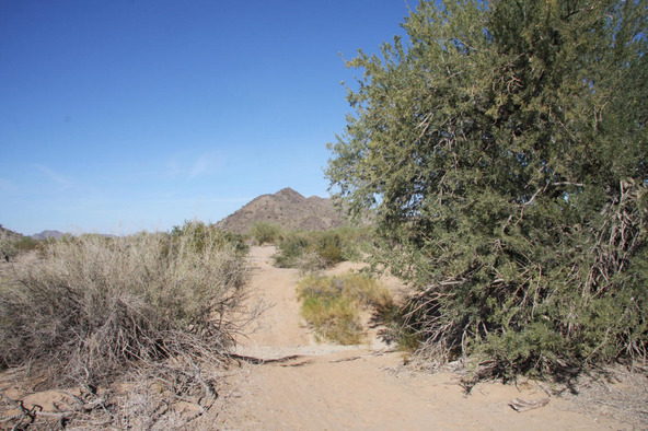 55410 W. Ivory Rd., Maricopa, AZ 85139 Photo 16