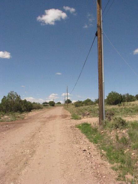206e Bixler Trail, Ash Fork, AZ 86320 Photo 3