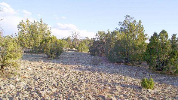 12498 N. Chino Rd., Williams, AZ 86046 Photo 15