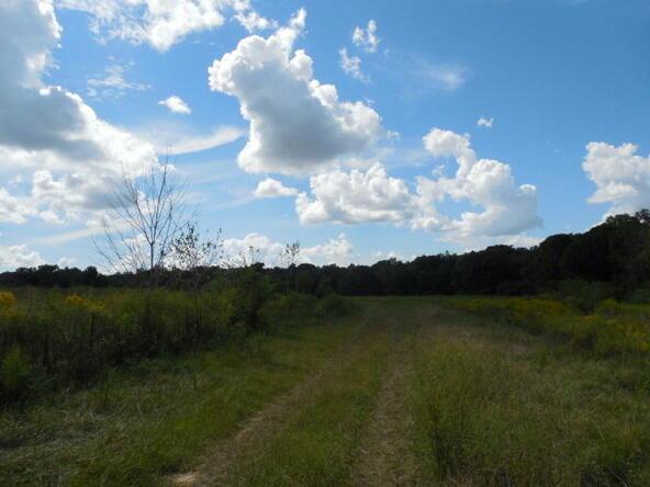 1790 St. Mary Rd., Cottonwood, AL 36320 Photo 39
