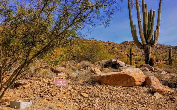 13417 N. 137th St., Scottsdale, AZ 85259 Photo 17