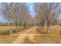 Home for sale: 3395 Autuga Cr 78 Rd., Autaugaville, AL 36003