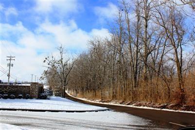 3957 Real Quiet Ln., Lexington, KY 40509 Photo 4
