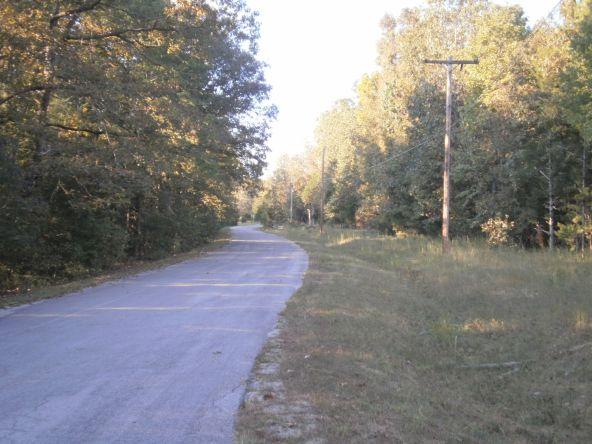 21 Walla Walla Dr., Cherokee Village, AR 72529 Photo 3