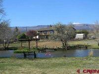 Home for sale: 16668 Bull Mesa Rd., Cedaredge, CO 81413