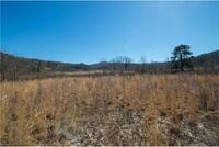 Home for sale: Tbd Pleasant Grove Rd., Hendersonville, NC 28739